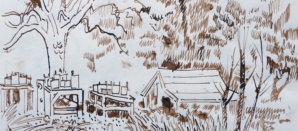 Narcissus Farm, Carmel Valley, sketch